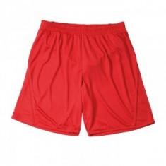 Trenky Team Shorts Junior
